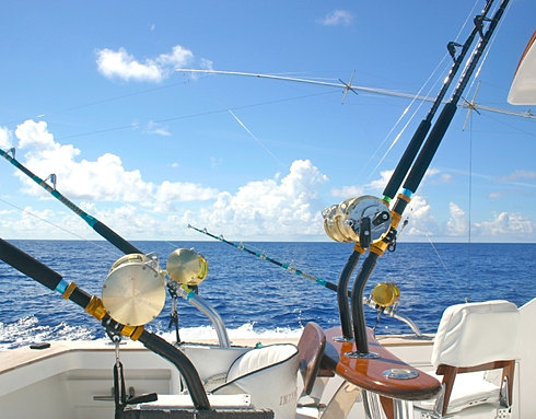 Rifle and reel maryland directory of hunting and fishing for Deep sea fishing maryland