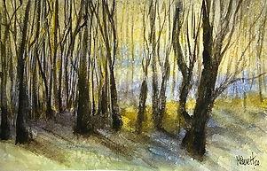 "Maitland Woods, 6""x10"" Watercolour #wate"