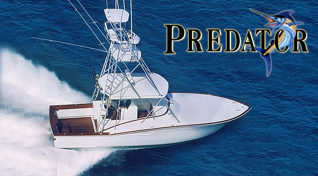 2-predetor.jpg