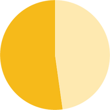 pie chart.png