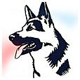 adiestrador canino madrid