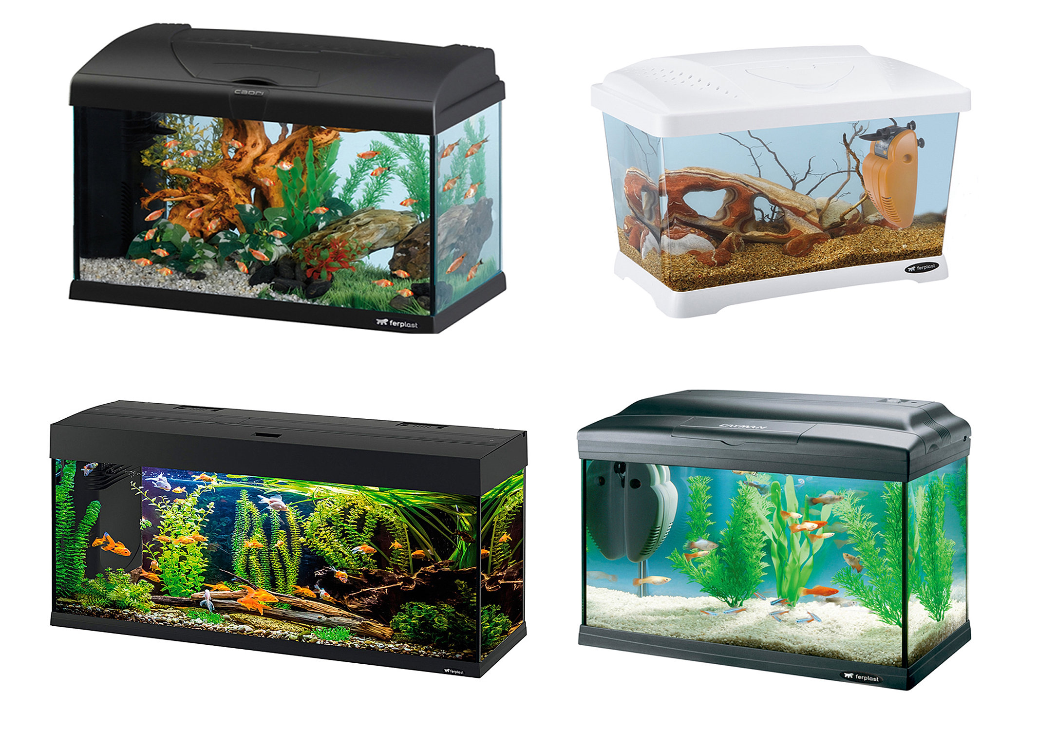 Freshwater Aquarium Fish In Dubai - Ferplast aqurium
