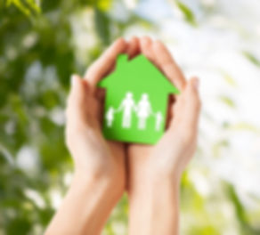 Healthy Homes Building Biology