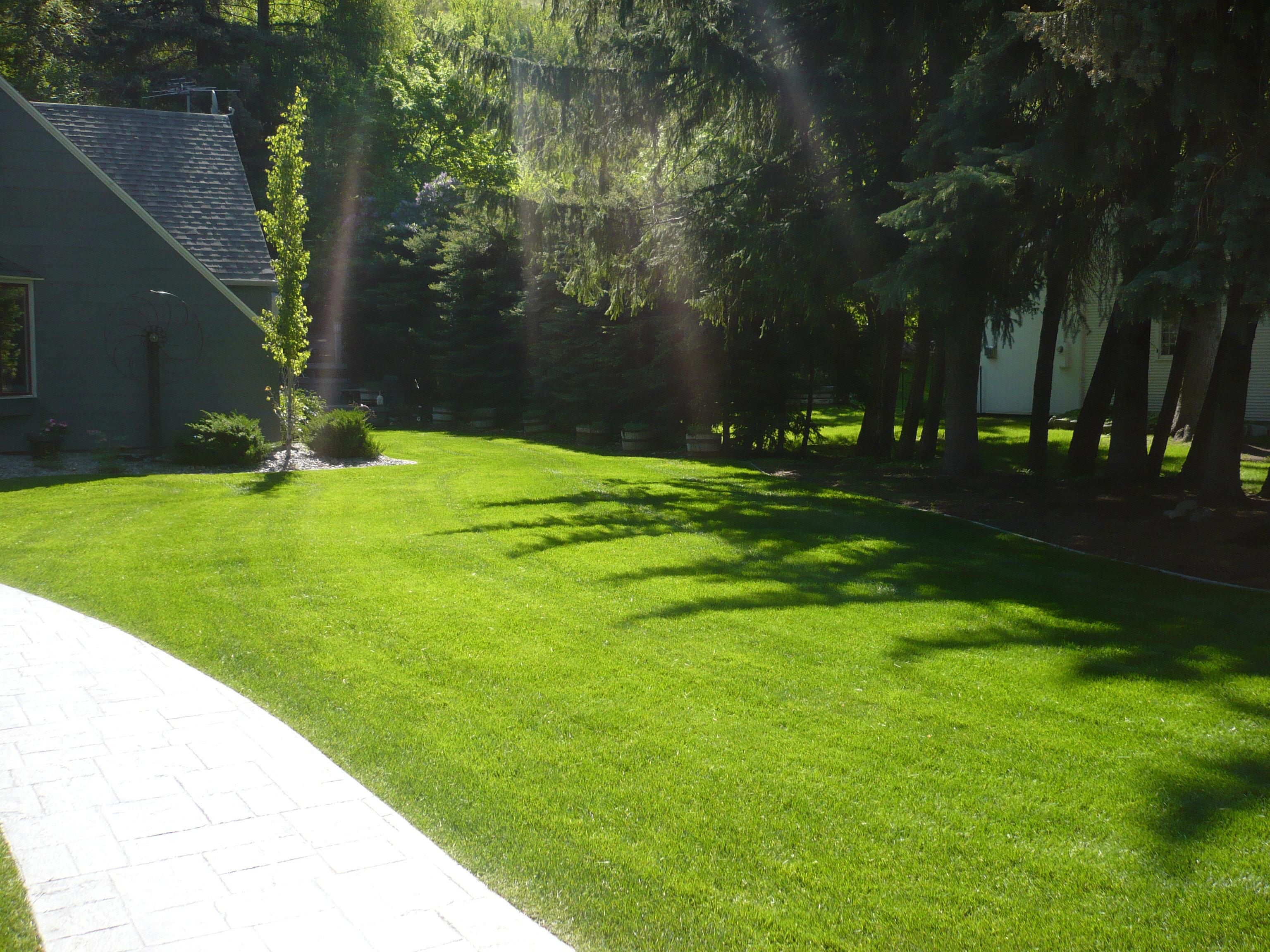 Green Grass Lawn Care Nebraska : Green grass mowed