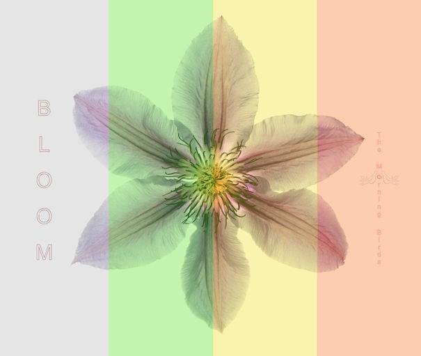 Bloom by The Morning Birds.jpg
