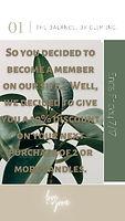 Green%20Beige%20Modern%20Minimalist%20Your%20Story_edited.jpg