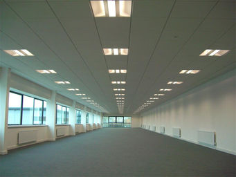 Wil-Cal Interior Commerical Lighting Repair 2.jpeg