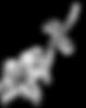 logo_lys_blanc_2_coupé_en_bas.png