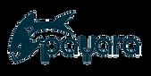payara-logo-blue-png_2.png