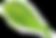 LEAVESAsset 6_4x.png