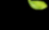 LEAVESAsset 1_4x.png