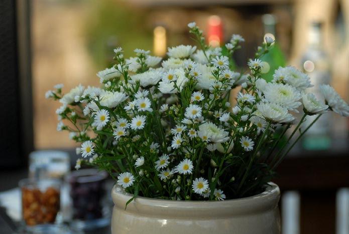 small flowerpot