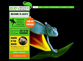 Reptile World Template - Chameleons blend in, but your business should stand out. Customize this bold and friendly theme to take your reptile shop or exotic pet business online. Add your own images, videos, and text to make a website that's uniquely yours!