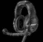 B40_Dual Ear.png
