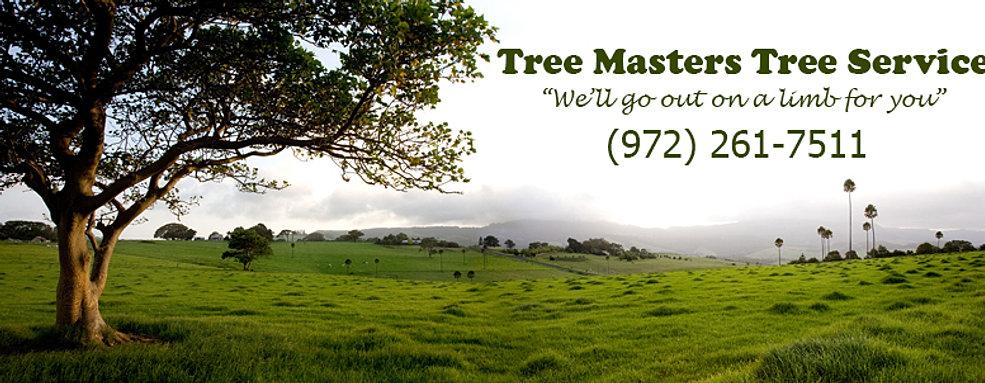 Local Area Tree Service