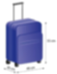 maleta.png