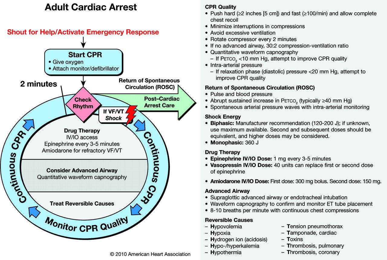The canadian e d triage and acuity scale tool wix com