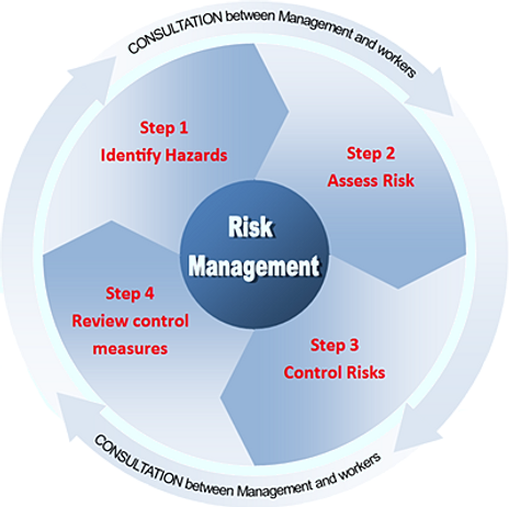 research proposal for risk management essay