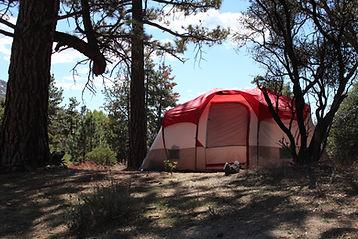 Tent Camping at Pine Springs Ranch