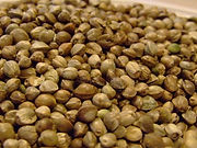 Hemp-Seed-Close-Up.jpg