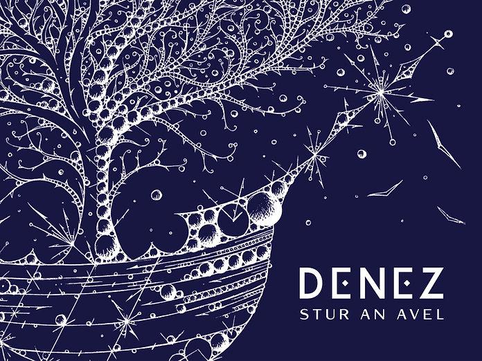 denez-stur-digital (glissé(e)s).jpg