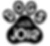 DWJ logo.png