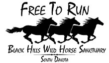 Black Hills Wild Horse Sanctuary, South Dakota