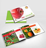 Fruit Brochure Design