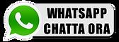 Pulsante-Whatsapp-chat.png