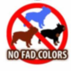 No Fad colors.JPG