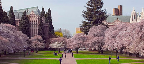 What are my chances of getting accepted into the University of Washington?