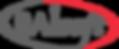 raisoft-logo.png