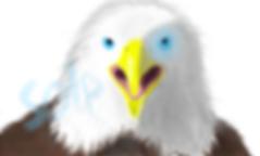 독수리(프로필)