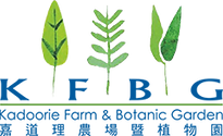 Logo_KFBG_s.png