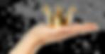 THS hand mit krone frei.png