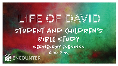Life of David.png