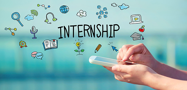5 important takeaways from your internship office parrots find