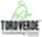 Logo TVTC.png