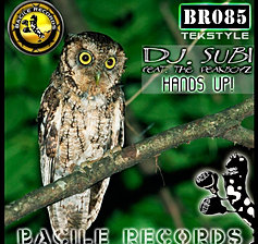 (Track) BR 085 Dj. Subi...Hands Up!