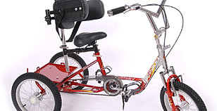 Mx 16 special needs trike red and si
