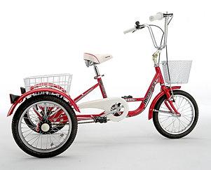 Trikette 16 inch wheel €575