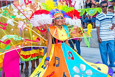 Miami-Broward_Jr_Carnival_2014-378.jpg