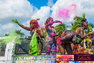 Dutty_Pleasures_Jouvert_2014_jpegs-367.jpg