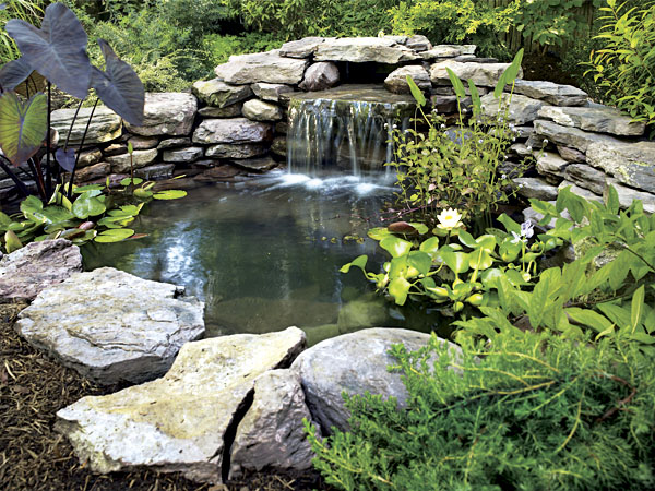 Black country solutions pond installation garden for Garden pond installers