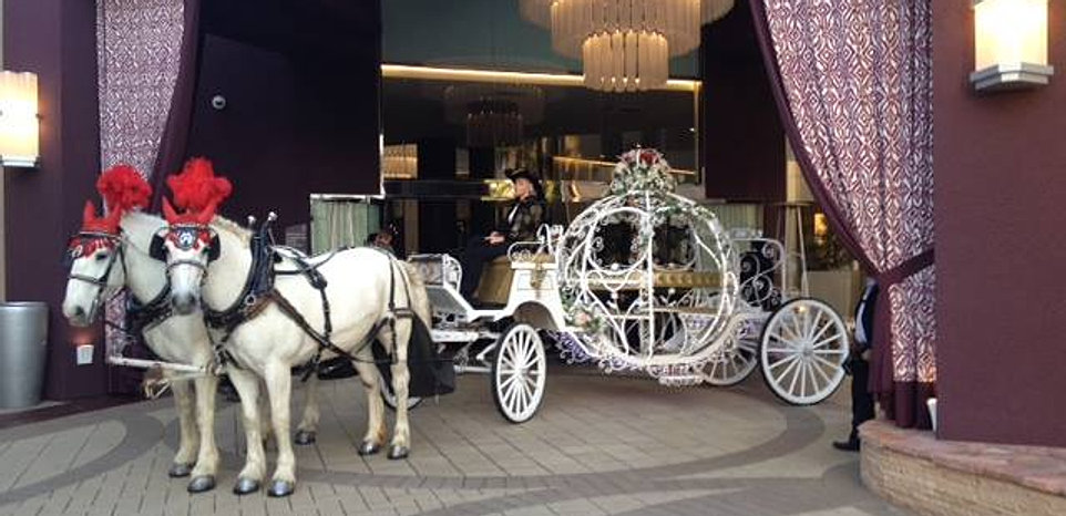 Cinderella wedding carriage rental ca cindy cinderella for Horse property for rent in southern california