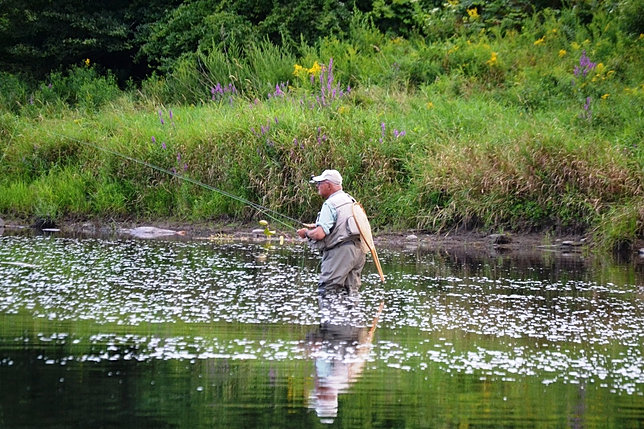 Upper delaware fly fishing report ken tutalo 39 s baxter for Roscoe ny fishing