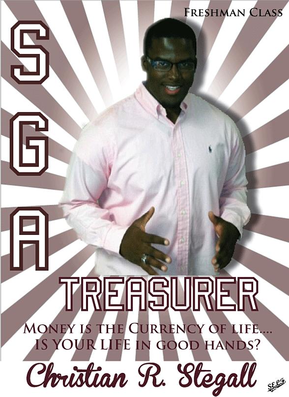 treasurer campaign flyers hong hankk co