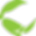 Project Kiwi Trust- Kiwi Conservation