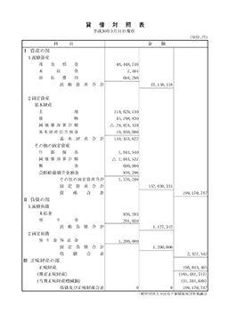 balance-sheet_2017.jpg