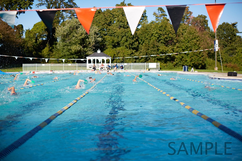 Ashbourne swim club for Olympic park swimming pool membership